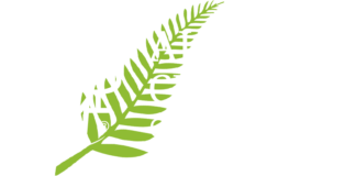 Alliance Churches of New Zealand